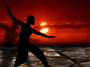 martial-arts-291046_640